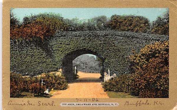 Ivy Arch Buffalo, New York Postcard