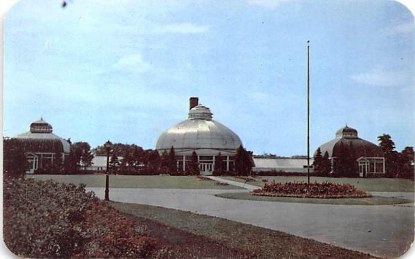 South Park Conservatory Buffalo, New York Postcard