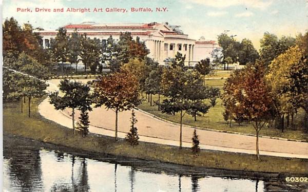 Park, Drive & Albright Art Gallery Buffalo, New York Postcard