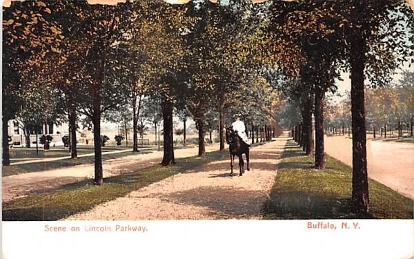 Lincoln Parkway Buffalo, New York Postcard