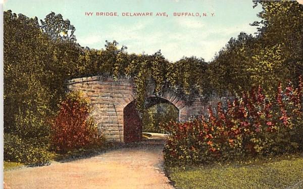 Ivy Bridge Buffalo, New York Postcard