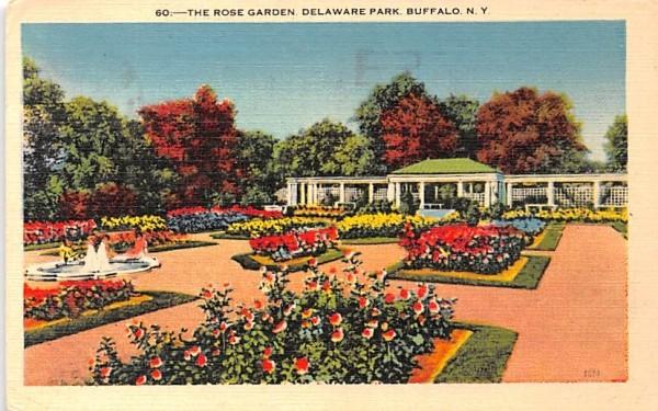 The Rose Garden Buffalo, New York Postcard