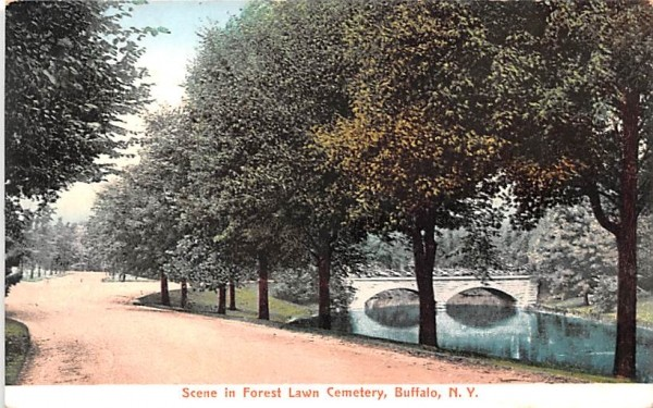 Forest Lawn Cemetery Buffalo, New York Postcard