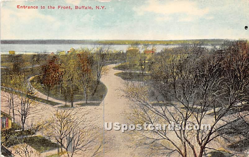 Buffalo, New York NY Postcard
