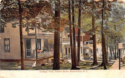 Cottage View Binghamton, New York Postcard