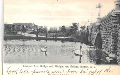 Elmwood Avenue Bridge Buffalo, New York Postcard