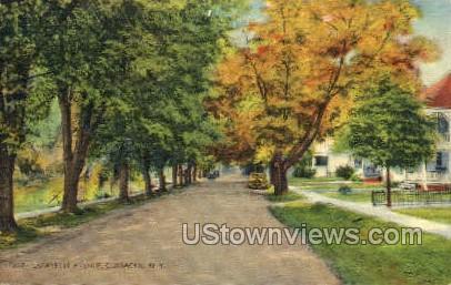Lafayette Ave - Coxsackie, New York NY Postcard