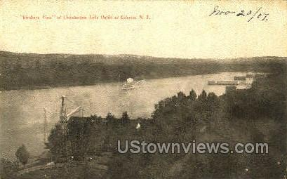 Bridge Vine - Celoron, New York NY Postcard