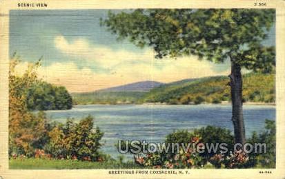 Coxsackie, New York, NY Postcard