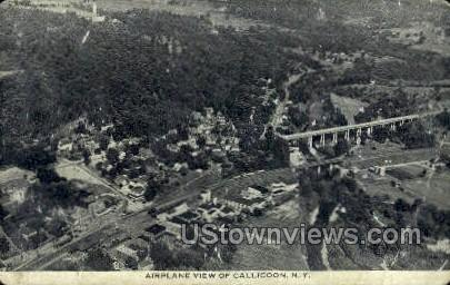 Airplane View - Callicoon, New York NY Postcard