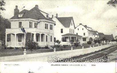 Delaware Ave. - Callicoon, New York NY Postcard