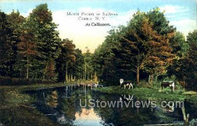 Mirror Picture in Sullivan Co - Callicoon, New York NY Postcard