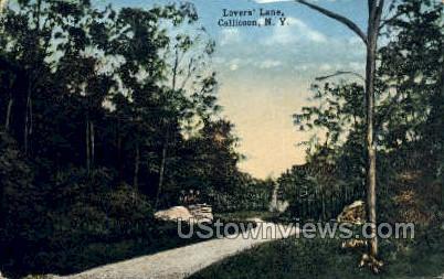 Lovers' Lane - Callicoon, New York NY Postcard