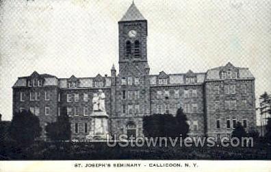 St. Joseph's Seminary - Callicoon, New York NY Postcard