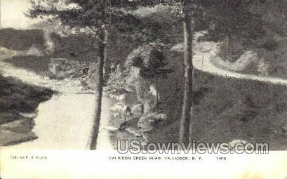 Calicoon Creek Road - Callicoon, New York NY Postcard