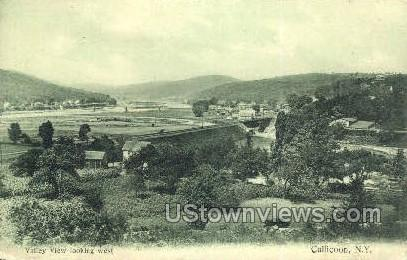 Valley View looking West - Callicoon, New York NY Postcard