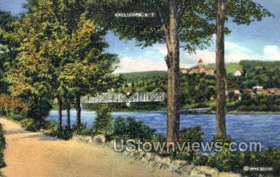 Callicoon, New York, NY Postcard
