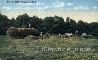 Haying Time - Callicoon, New York NY Postcard