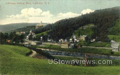 Callicoon looking West - New York NY Postcard