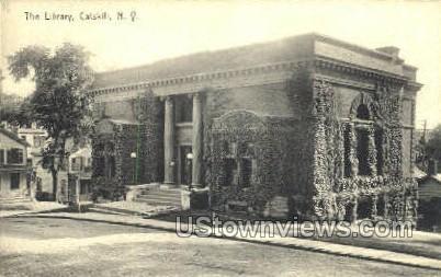 The Library - Catskill, New York NY Postcard