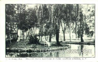 Willow Point, Sanitarium Park - Clifton Springs, New York NY Postcard