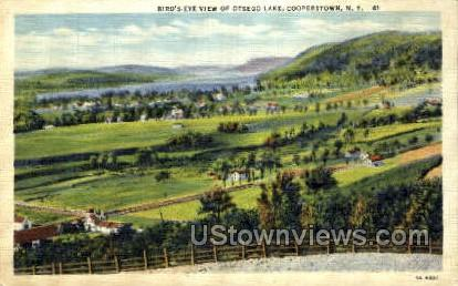 Otsego Grounds - Cooperstown, New York NY Postcard