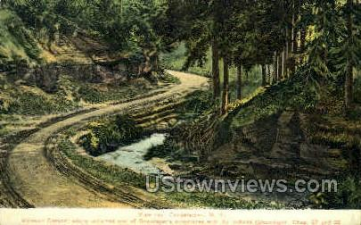 Mohican Canyon - Cooperstown, New York NY Postcard