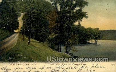 Three Mile Point - Cooperstown, New York NY Postcard
