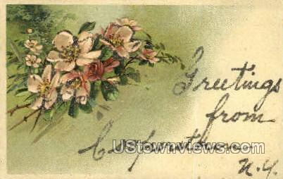Cooperstown, New York, NY Postcard