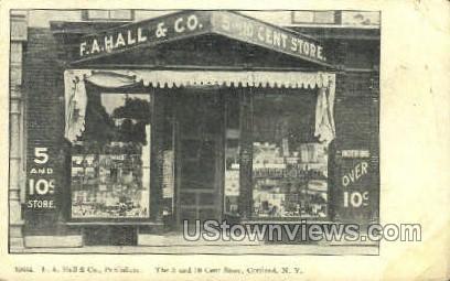 F.A. Hall & Co. - Cortland, New York NY Postcard