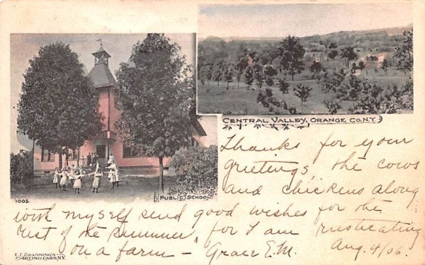 Public School Central Valley, New York Postcard