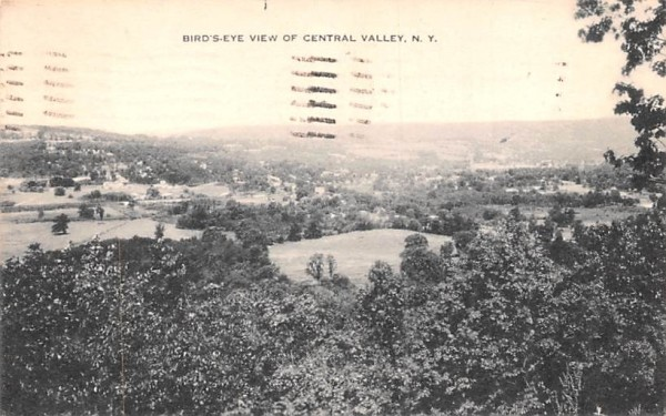 Bird's Eye View Central Valley, New York Postcard