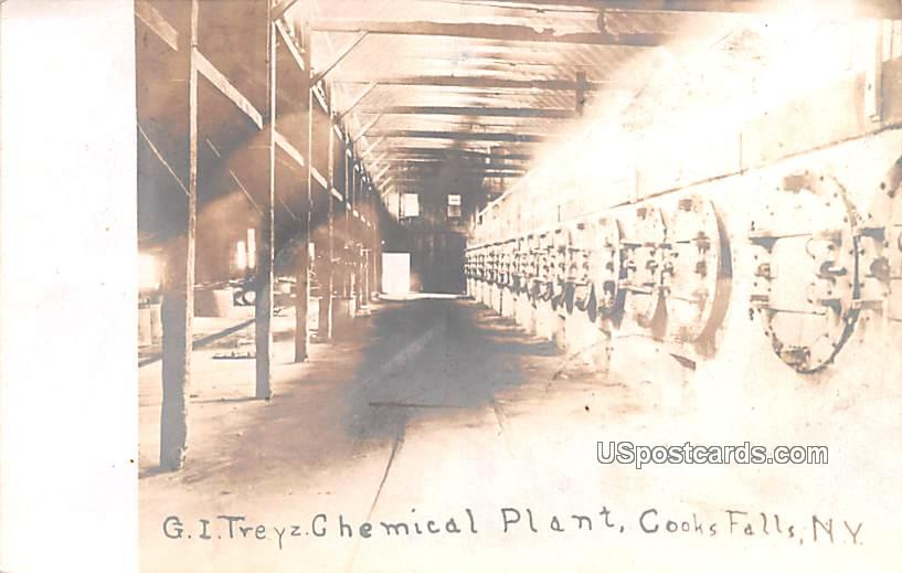 GI Treyz Chemical Plant - Cooks Falls, New York NY Postcard
