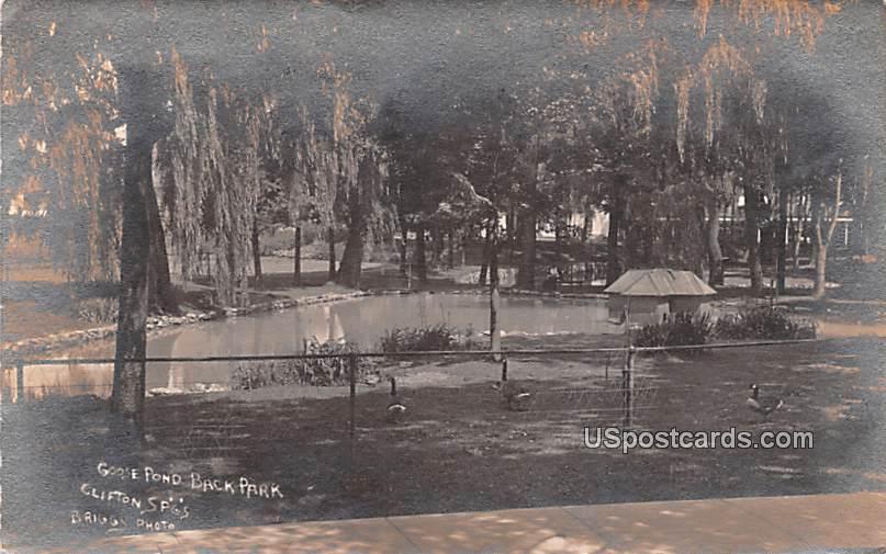 Goose Pond Back Park - Clifton Springs, New York NY Postcard
