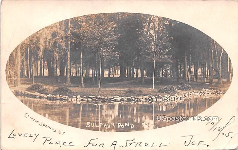 Sulphur Pond - Clifton Springs, New York NY Postcard