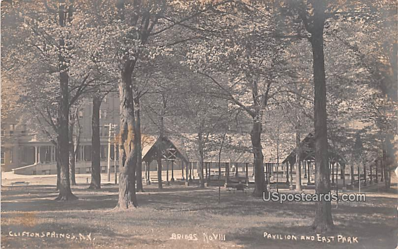 Pavilion and East Park - Clifton Springs, New York NY Postcard