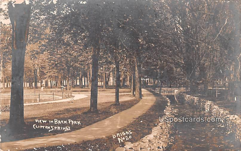 View in Back Park - Clifton Springs, New York NY Postcard