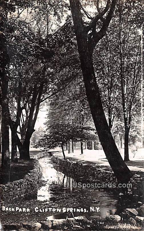 Back Park - Clifton Springs, New York NY Postcard