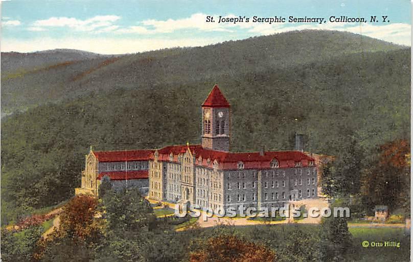 St Joseph's Searphic Seminary - Callicoon, New York NY Postcard
