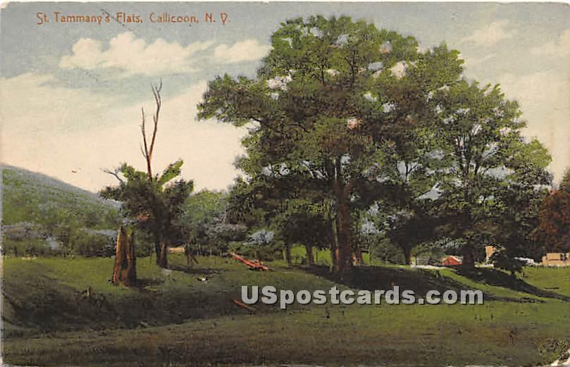 St Tammany's Flats - Callicoon, New York NY Postcard