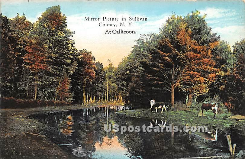 Mirror Picture - Callicoon, New York NY Postcard