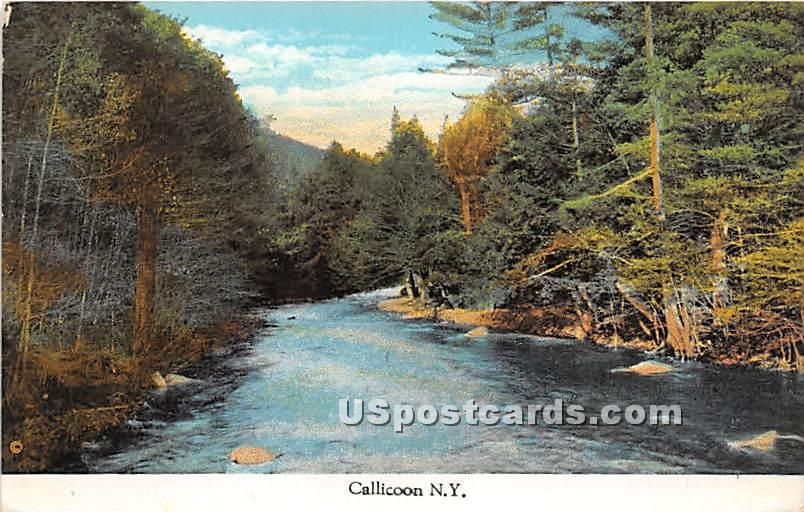 River Scene - Callicoon, New York NY Postcard