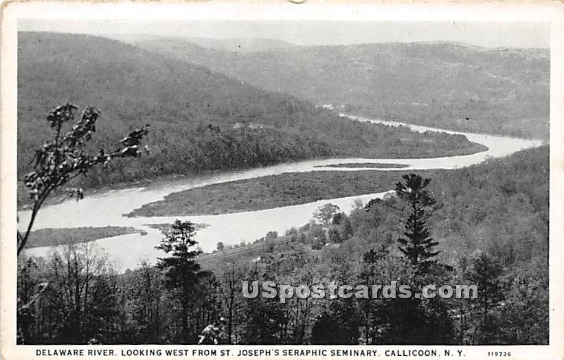 Delaware River Looking West - Callicoon, New York NY Postcard