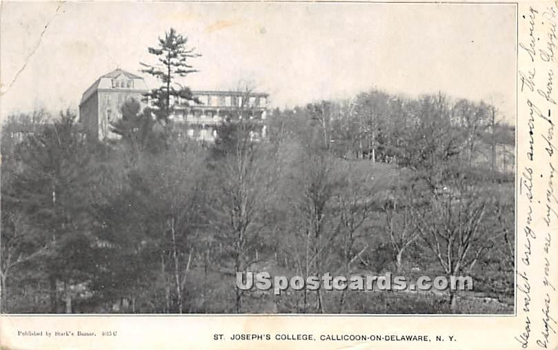 St Joseph's College - Callicoon, New York NY Postcard