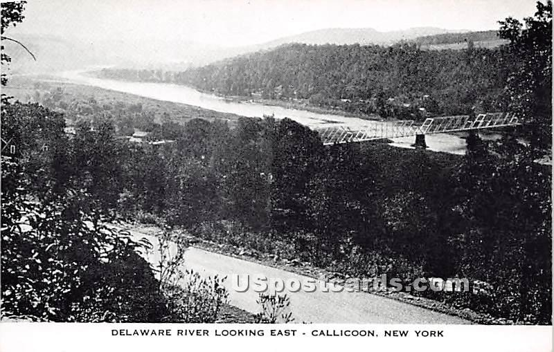 Delaware River Looking East - Callicoon, New York NY Postcard