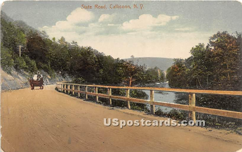 State Road - Callicoon, New York NY Postcard