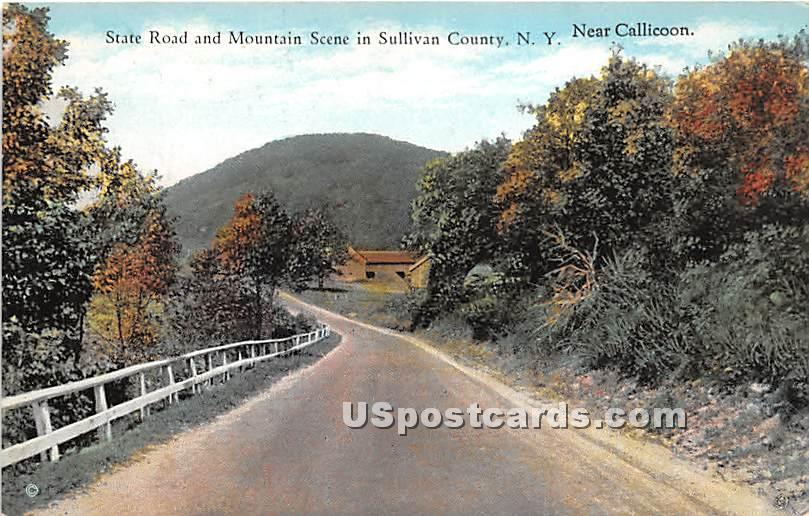 State Road and Mountain Scene - Callicoon, New York NY Postcard