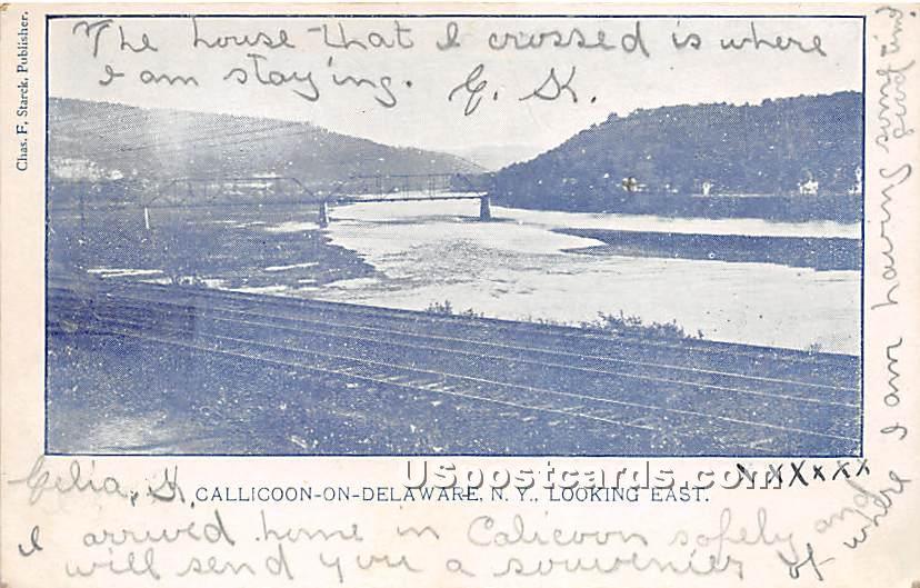 Looking East - Callicoon, New York NY Postcard