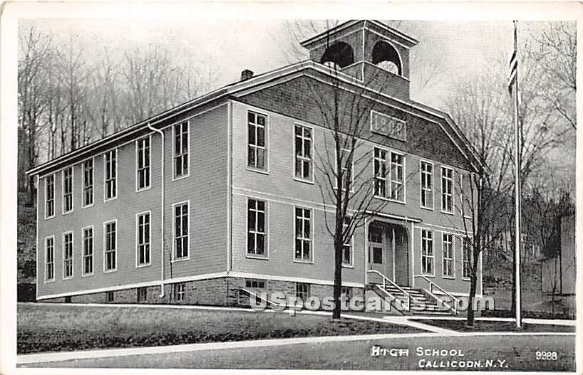 High School - Callicoon, New York NY Postcard