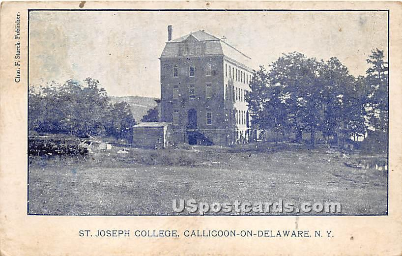 St Joseph College - Callicoon, New York NY Postcard